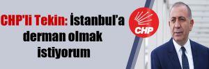 CHP'li Tekin: İstanbul'a derman olmak istiyorum