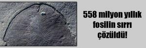 558 milyon yıllık fosilin sırrı çözüldü!