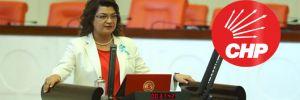 CHP'li Şahin: Kadınları şiddetten koruyan yasalar uygulanmıyor…