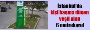 İstanbul'da kişi başına düşen yeşil alan 6 metrekare!