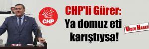 CHP'li Gürer: Ya domuz eti karıştıysa!