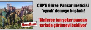 CHP'li Gürer: Pancar üreticisi 'eyvah' demeye başladı! 'Binlerce ton şeker pancarı tarlada çürümeyi bekliyor'