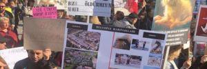 Hayvanseverlerden tepki: Katliam yasa tasarısına 'hayır' diyoruz