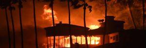 Tarihin en büyük yangınında ölü sayısı artıyor