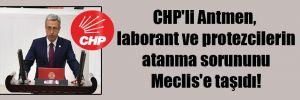 CHP'li Antmen, laborant ve protezcilerin atanma sorununu Meclis'e taşıdı!