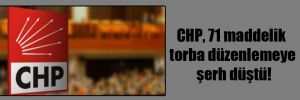 CHP, 71 maddelik torba düzenlemeye şerh düştü!
