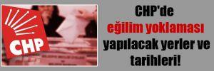 CHP'de eğilim yoklaması yapılacak yerler ve tarihleri!