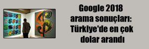 Google 2018 arama sonuçları: Türkiye'de en çok dolar arandı