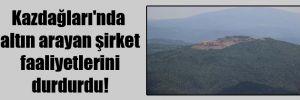 Kazdağları'nda altın arayan şirket faaliyetlerini durdurdu!