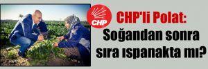CHP'li Polat: Soğandan sonra sıra ıspanakta mı?