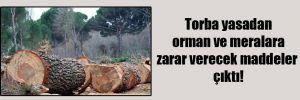 Torba yasadan orman ve meralara zarar verecek maddeler çıktı!
