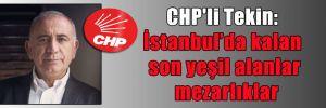 CHP'li Tekin: İstanbul'da kalan son yeşil alanlar mezarlıklar