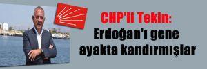 CHP'li Tekin: Erdoğan'ı gene ayakta kandırmışlar