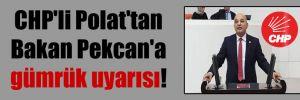CHP'li Polat'tan Bakan Pekcan'a gümrük uyarısı!