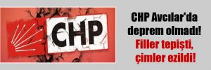 CHP Avcılar'da deprem olmadı! Filler tepişti, çimler ezildi!