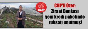 CHP'li Özer: Ziraat Bankası yeni kredi paketinde ruhsatı unutmuş!