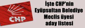 İşte CHP'nin Eyüpsultan Belediye Meclis üyesi aday listesi
