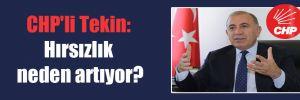 CHP'li Tekin: Hırsızlık neden artıyor?