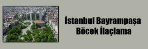 İstanbul Bayrampaşa Böcek İlaçlama
