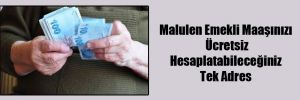 Malulen Emekli Maaşınızı Ücretsiz Hesaplatabileceğiniz Tek Adres