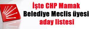 İşte CHP Mamak Belediye Meclis üyesi aday listesi