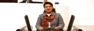 CHP'li Şahin: Diş hekimleri görev tanımının dışına çıkarıldı!