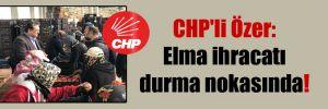 CHP'li Özer: Elma ihracatı durma nokasında!