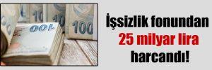 İşsizlik fonundan 25 milyar lira harcandı!