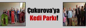Çukurova'ya Kedi Parkı!