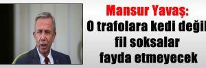 Mansur Yavaş: O trafolara kedi değil fil soksalar fayda etmeyecek