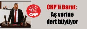CHP'li Barut: Aş yerine dert büyüyor