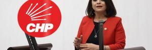 CHP'li Taşcıer grip aşılarını sordu!