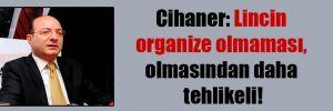 Cihaner: Lincin organize olmaması, olmasından daha tehlikeli!