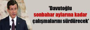 'Davutoğlu sonbahar aylarına kadar çalışmalarını sürdürecek'