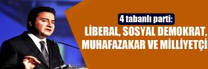 4 tabanlı parti: Liberal, sosyal demokrat, muhafazakar ve milliyetçi!