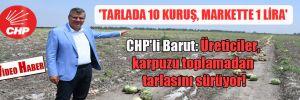 CHP'li Barut: Üreticiler, karpuzu toplamadan tarlasını sürüyor! 'Tarlada 10 kuruş, markette 1 lira'
