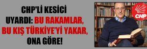 CHP'li Kesici uyardı: Bu rakamlar, bu kış Türkiye'yi yakar, ona göre!