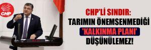 CHP'li Sındır: Tarımın önemsenmediği 'Kalkınma Planı' düşünülemez!