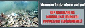 Marmara Denizi alarm veriyor!  'Dip balıkları ve kabuklu su ürünleri çocuklara yedirilmemeli'