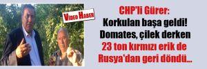 CHP'li Gürer: Korkulan başa geldi! Domates, çilek derken 23 ton kırmızı erik de Rusya'dan geri döndü…