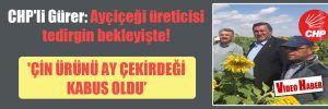 CHP'li Gürer: Ayçiçeği üreticisi tedirgin bekleyişte!  'Çin ürünü ay çekirdeği kabus oldu'