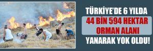 Türkiye'de 6 yılda 44 bin 594 hektar orman alanı yanarak yok oldu!