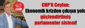 CHP'li Ceylan: Ekonomik krizden çıkışın yolu güçlendirilmiş parlamenter sistem!