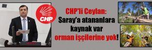 CHP'li Ceylan: Saray'a atananlara kaynak var orman işçilerine yok!