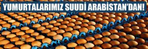 Yumurtalarımız Suudi Arabistan'dan!