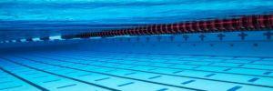 Milli yüzücülerden havuzda tarihi başarı!