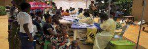Ebola 500 çocuğun hayatına mal oldu