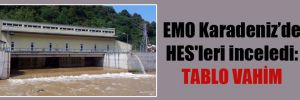 EMO Karadeniz'de HES'leri inceledi: Tablo vahim
