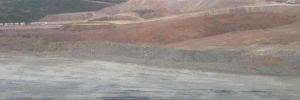 Kaz Dağları'nda orman katliamı yapan şirket küçülmeye gitti