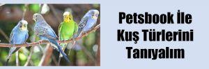 Petsbook İle Kuş Türlerini Tanıyalım